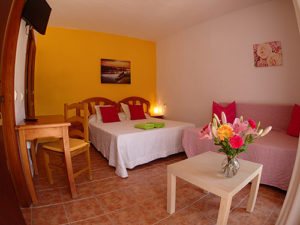 Apartment-Studio in Palmar